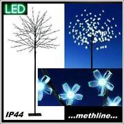 LED Kirschbaum