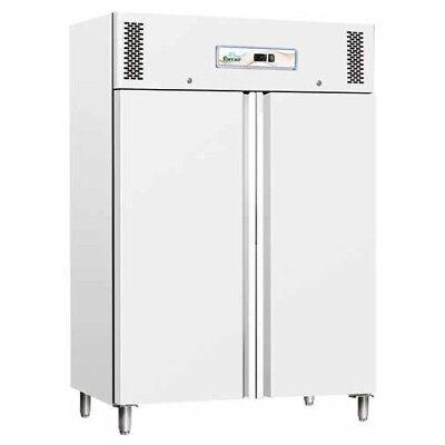 Armadio frigorifero frigo 2 porte -18 -22 RS0079