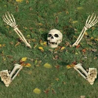 Halloween Dekoration Ground Breaker Skelett gruselig Party Prop - Halloween Skelett Dekoration