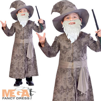 Halloween Day Story (Wise Wizard Boys Fancy Dress Halloween Fairy Tale Book Day Childs Kids)