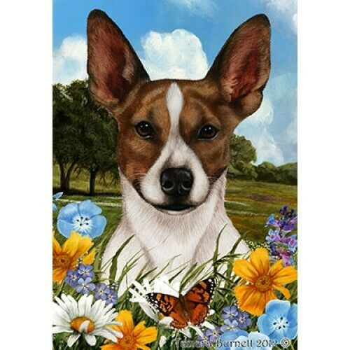 Summer House Flag - Brown and White Rat Terrier 18130