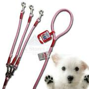 Braided Dog Lead