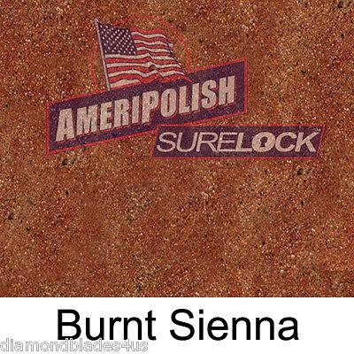 1 Gl. Burnt Sienna Concrete Color Dye 4 Cement Stain Ameripolish Surelock Color