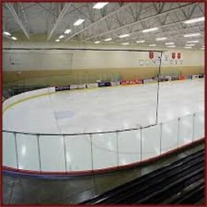 HOCKEY BARRIER/SAFETY Netting for Back Yard RINKS