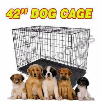 "Brand New 42"" XLarge Collapsible Metal Pet Dog Puppy Cage Crate Maylands Bayswater Area Preview"
