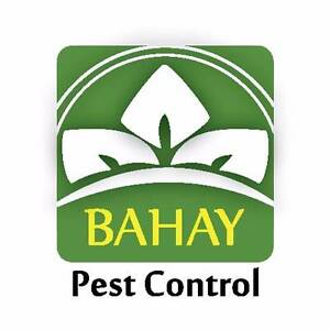 BAHAY PEST CONTROL Buderim Maroochydore Area Preview