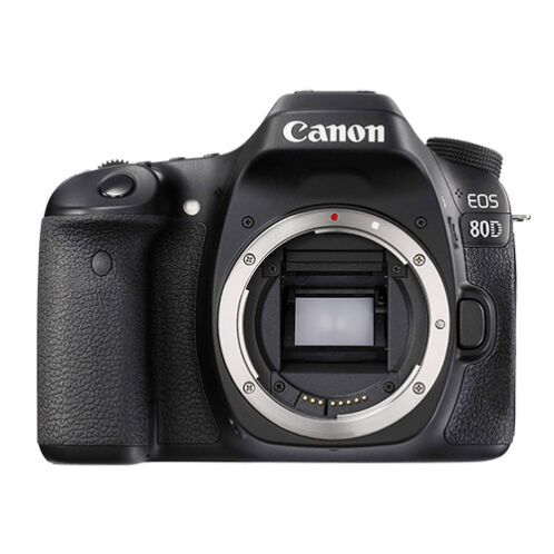 Canon EOS 80D 24.2MP Digital SLR Camera Body -   84 - Canon EOS 80D 24.2MP Digital SLR Camera Body