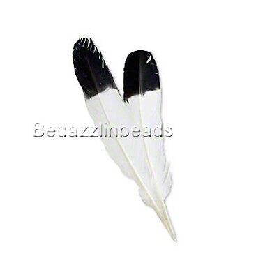 Set of 2 Big Black & White Imitation Eagle Bird Feathers 13 Inches Long