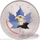 Bald Eagle Coin