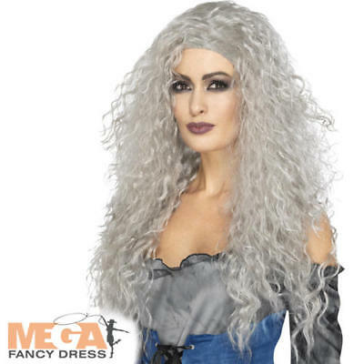 Silver Banshee Witch Wig Ladies Fancy Dress Halloween Adults Costume - Banshee Costumes