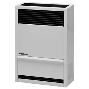 Williams 14,000 btu direct vent heater