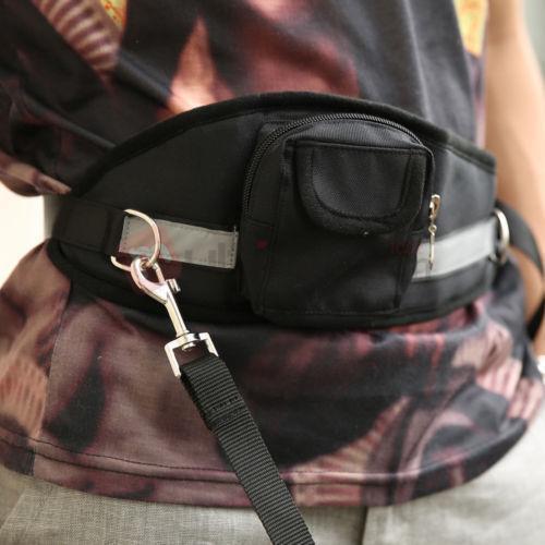 Belt Dog Leash Ebay