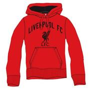 Liverpool Jumper
