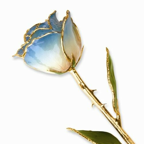 Blue and White Rose 24K Yellow Gold Trimmed Lacquered Long Stemmed Rose