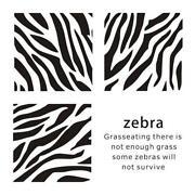 Zebra Room Decor