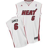 Nba Lebron James Miami Heat Camiseta De Baloncesto -  - ebay.es