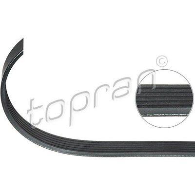 TOPRAN Keilrippenriemen - 113 197 - Seat Ibiza. Skoda Fabia,Roomster. VW Fox,Pol