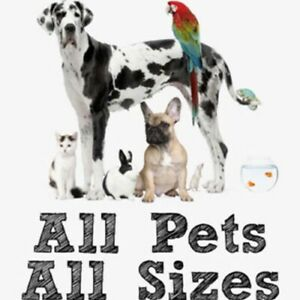 Pet sitting in your house or mine.