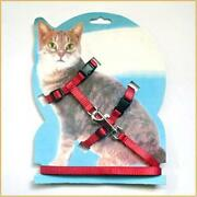 Kitten Harness
