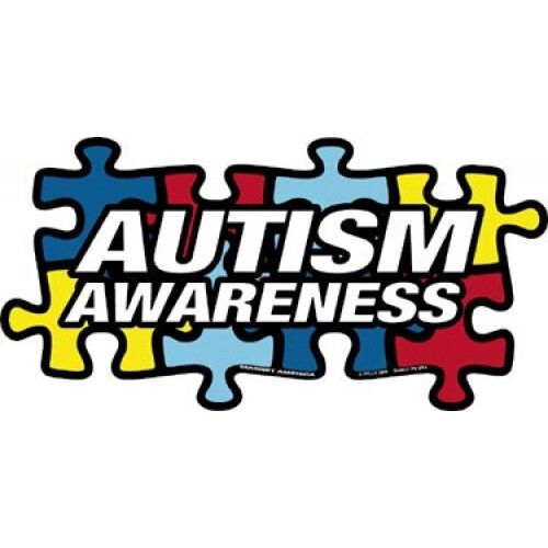 "Autism Awareness Puzzle Piece Car Magnet  4"" x 8"""