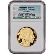 2006 Gold Buffalo Proof