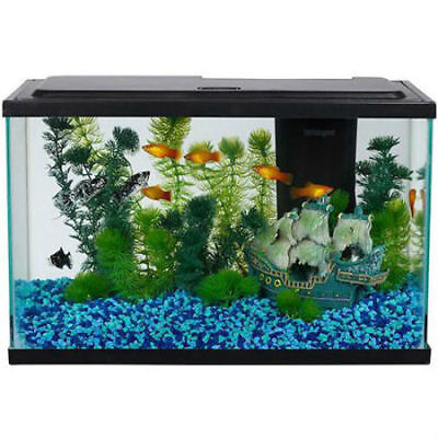 Aqua Culture Aquarium Fish Tank Starter Kit Tetra Internal Filter LED 5-Gallon