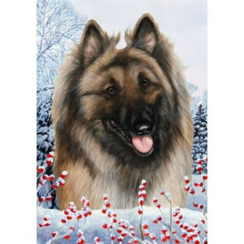 Winter Garden Flag - Belgian Tervuren 150831