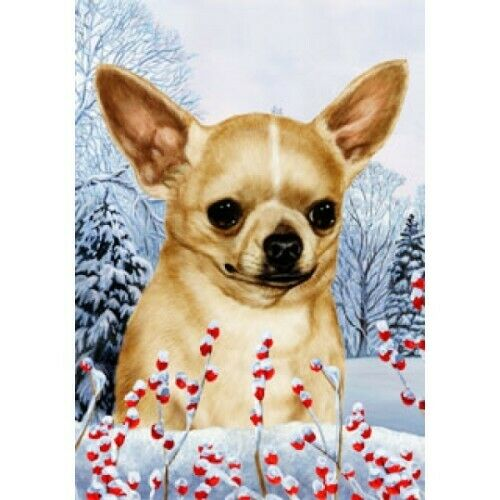 Winter House Flag - Chihuahua 15046