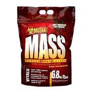 Whey Protein 8kg