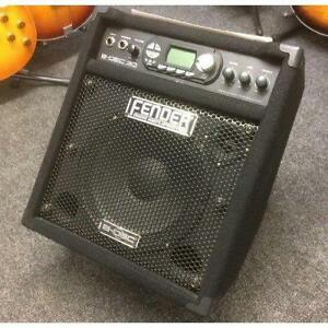 Fender bdec 30 base amp, has loads of features, modeling, loop,