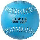 Markwort Weighted Baseballs, Softballs & Bats