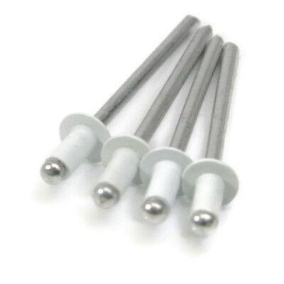 (White All Aluminum POP Rivets - (4-3) 1/8