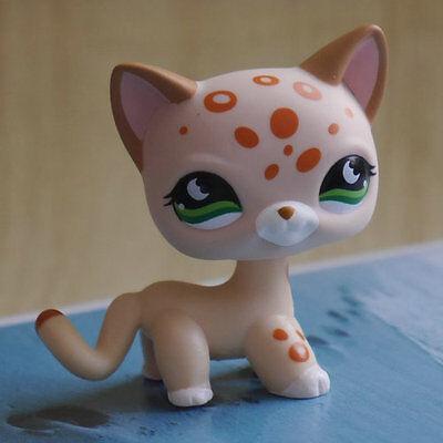 """LPS COLLECTION Figure Rainsdrop #852 short hair cat kitty 2"""" LITTLEST PET SHOP"""