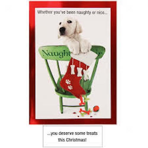 """15 Retriever Christmas Cards - Whether You Have Been Naughty or Nice """"Boxed"""" USA"""