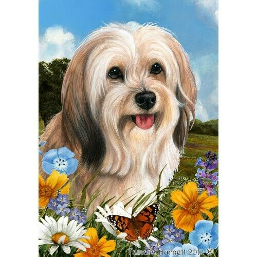 Summer House Flag - Cream Sable Tibetan Terrier 32479