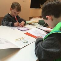 Autism support - nanny & therapist for 2 boys with Aspergers in