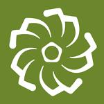 hojnysucculents