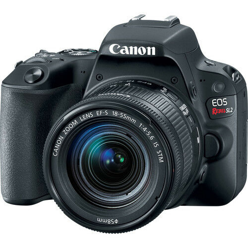 Canon EOS Rebel SL2 DSLR Camera with EF-S 18-55mm IS STM Lens 2249C002