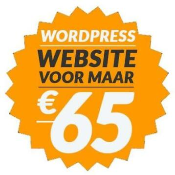 Wordpress Website: € 65 incl. domein en hosting!