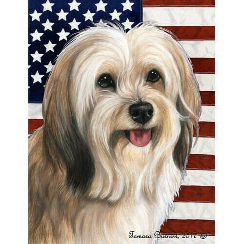 Patriotic (D2) House Flag - Cream Sable Tibetan Terrier 32479