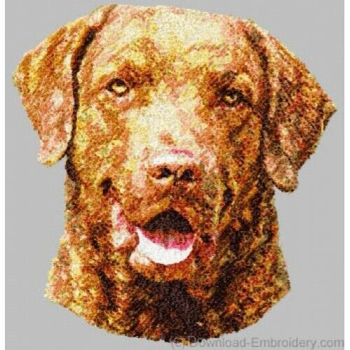 Embroidered Short-Sleeved T-Shirt - Chesapeake Bay Retriever DLE1507