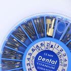 Endodontics Titanium Post Screw Post Endodontic Posts