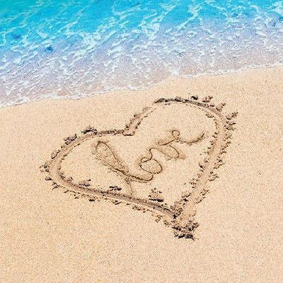 Beach Love Lunch Napkins Wedding Bridal Shower Luau Party Supplies 16 ct