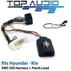 Car Audio & Video Wire Harnesses for BL