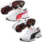 PUMA 12 Golf Shoes for Men