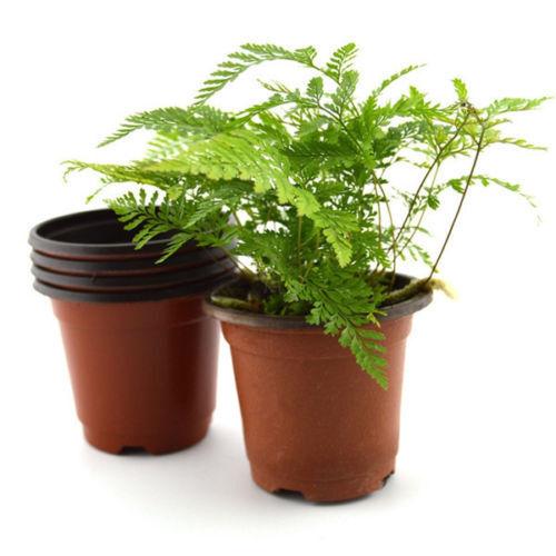 Mini Plastic Round Flower Pot Terracotta Nursery Planter Home Garden Decor FG