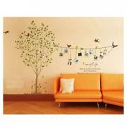 Photo Wall Mural Trees