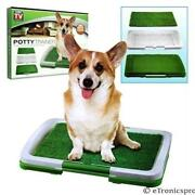 Dog Potty Grass