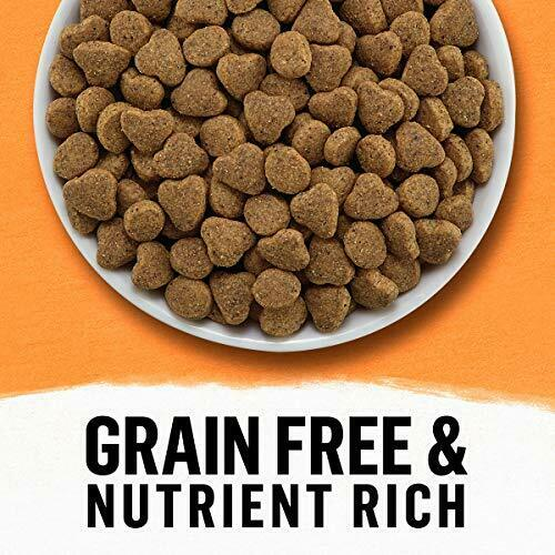 Purina Beyond Grain Free, Natural Dry Cat Food, Grain Free White Meat Chicken - $71.52