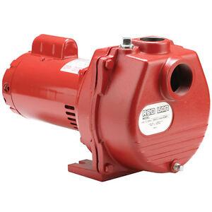 Red Lion 89 GPM 2 HP Self-Priming Cast Iron Sprinkler Pump 614673